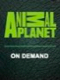 On Demand – Animal Planet